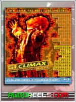 Thumb - NJPW G1 Climax 2013