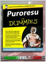 BD Thumbnail - Puroresu for Dummies