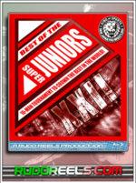 BD Thumbnail - NJPW Best of the Super Jr XXII (2015)